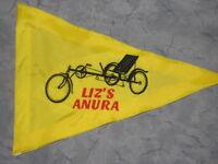 Custom Recumbent Trike Triangle Safety Flag
