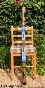 """DéTerminé 47 """"\ 120cm Native Didgeridoo Salamandre Sculpté à La Main Dot-peint Art + Sac +"""