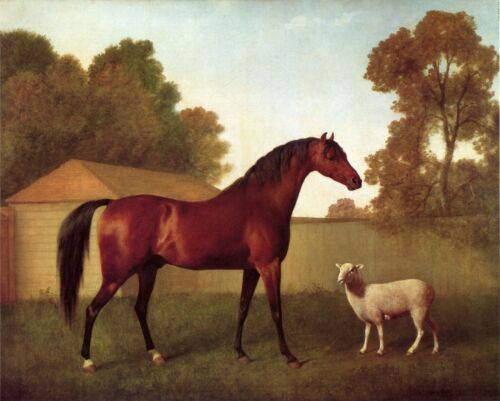 "Sheep Horse Dungannon Farm Scene ART 1793 14/""x11/"" Print George Stubbs"