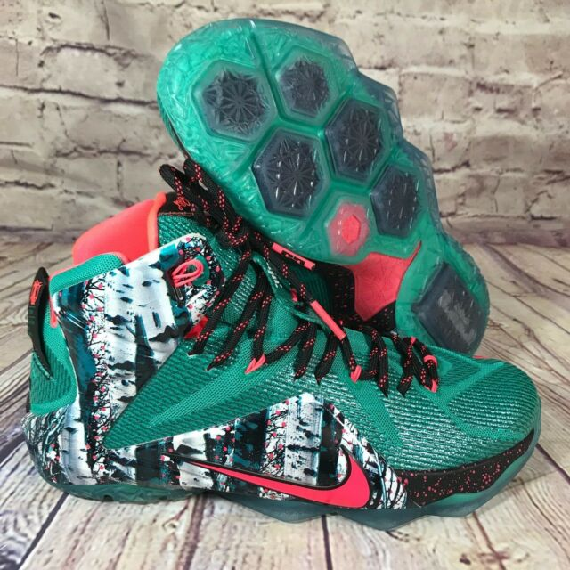wholesale dealer 3696e 01131 NIKE Lebron XII 12 Akron Birch Christmas Xmas Green/Hyper Punch Sz14  707558-363