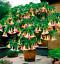 100-Pieces-Graines-Datura-Mini-Bonsai-Fleurs-Plantes-Maison-Jardin-Brugmansia-Floraison miniature 1