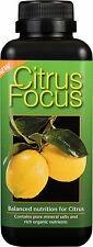 1 Litre - Citrus Focus - Nutrients - Liquid Fertilizer for Lemon, Orange, Lime