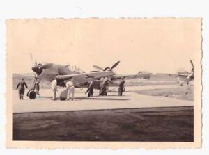 Original-Foto-Fw-190-A-3-mit-Staffelwappen-und-Kennung-Kommando-Staffelzeichen