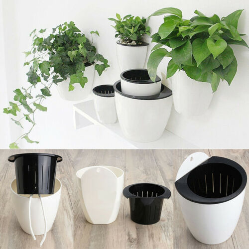 Plastic S//M//L Self-watering Plant Flower Pot Wall Hanging Planter Home Garden