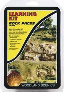 Woodland-Scenics-Rock-Making-Learning-Kit-LK951