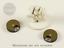 Pyrkol-Wound-Tracker-Dials-for-Warhammer-40k-Space-Marines-Terrain-Tau-Dice-Alt miniature 7