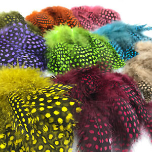 STRUNG-GUINEA-FOWL-FEATHERS-Hareline-Fly-Tying-Crafts-Jewelry-Making-Earring