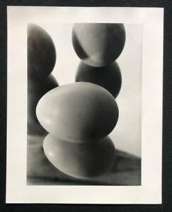 Hans-Finsler-Eier-im-Spiegel-II-Photographie-vor-1929-Nachlass