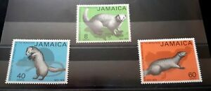 1973 Set Complet De 3 Jamaïque Timbres-intro De Mangoustes-non Utilisé Neuf Sans Charnière-afficher Le Titre D'origine