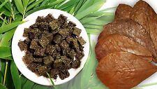50 PIECE CATAPPA BLEND LEAVE LIVE AQUARIUM RED CRYSTAL SHRIMP 100% NO Pesticides