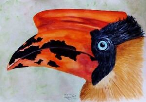PHILIPPINE-BIRD-RUFOUS-HORNBILL-ORIGINAL-WATERCOLOR-PAINTING