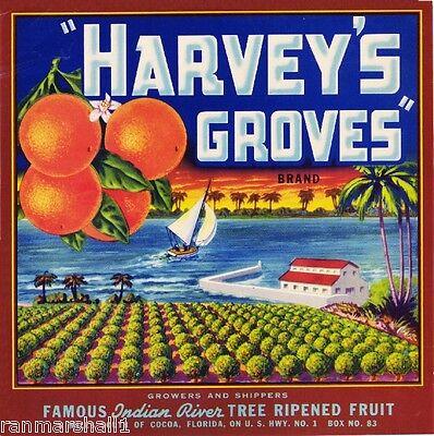 Cocoa Florida Harvey's Groves Orange Citrus Fruit Crate Label Vintage Art Print