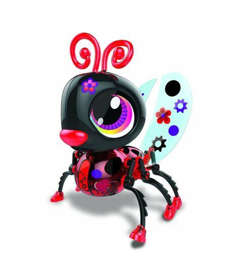 Build-A-Bot Marienkäfer Ladybug Roboter bauen lernen Mechanik MINT-Fächer