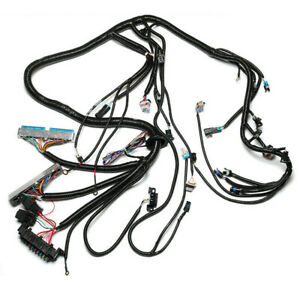 Stand Alone Wiring Harness 4L60E Fit For DBC LS1 Engine T56 4.8 5.3 6.0 97-06