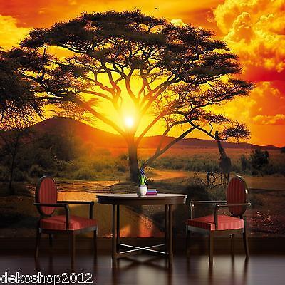 Fototapete Fototapeten Tapete Tapeten Poster AFRIKA SONNENUNTERGANG 400 P8