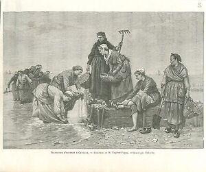 Paludieres-Pecheuses-d-039-Huitres-a-Cancale-par-Feyen-GRAVURE-ANTIQUE-PRINT-1894
