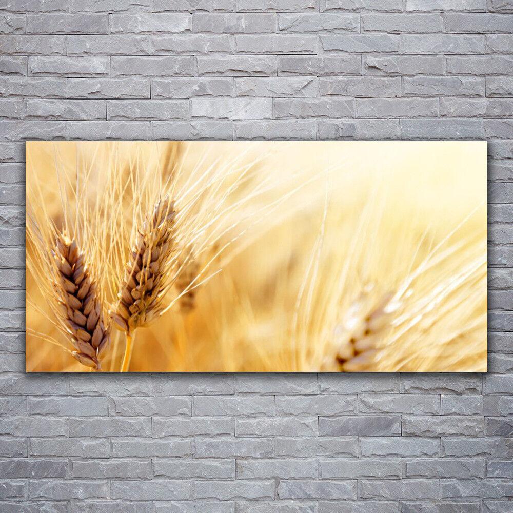 Glasbilder Wandbild Druck auf Glas 120x60 Weizen Pflanzen