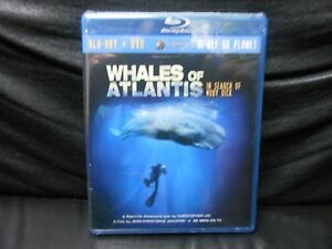 Whales-of-Atlantis-In-Search-of-Moby-Dick-Bluray-DVD-Combo-Widescreen-2010