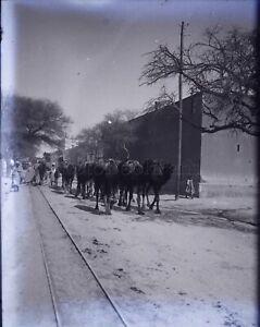 MAGHREB-Maroc-Algerie-Tunisie-Chemin-de-Fer-NEGATIF-Photo-Plaque-Verre-ca-1900