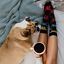 thumbnail 8 - Happy-Socks-Dogs-Pattern-Multicolor-Cotton-Socks-BNWT