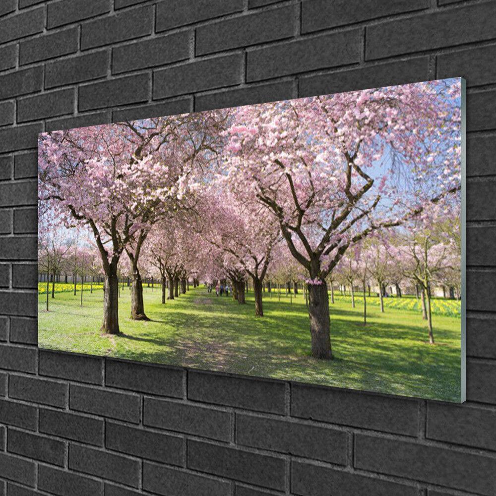 Image sur verre acrylique Tableau Impression 100x50 Nature Arbres Sentier