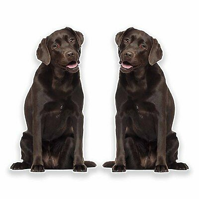 2 x Chocolate Labrador Vinyl Sticker Car Travel Luggage #9634