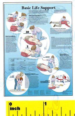 DOLLSHOUSE  Mini Doctor Physician  Life Support  Poster Print CDHM 1:12