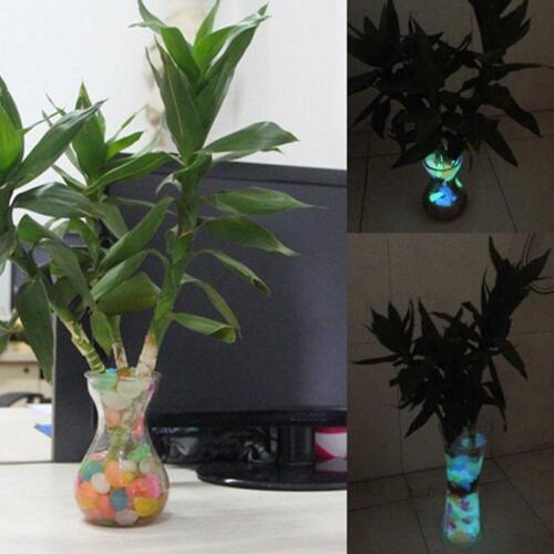 100Stk Leuchtsteine Farbe Leuchtkiesel leuchtende Deko Kiesel Steine Garten