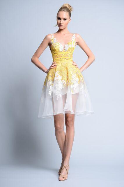e413e8ba2c NWT Designer Sleeveless Cage Skirting Party Dress