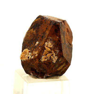 186.0 ct Pyrite Dolomite Calcite France. Lamalou-les-Bains H\u00e9rault