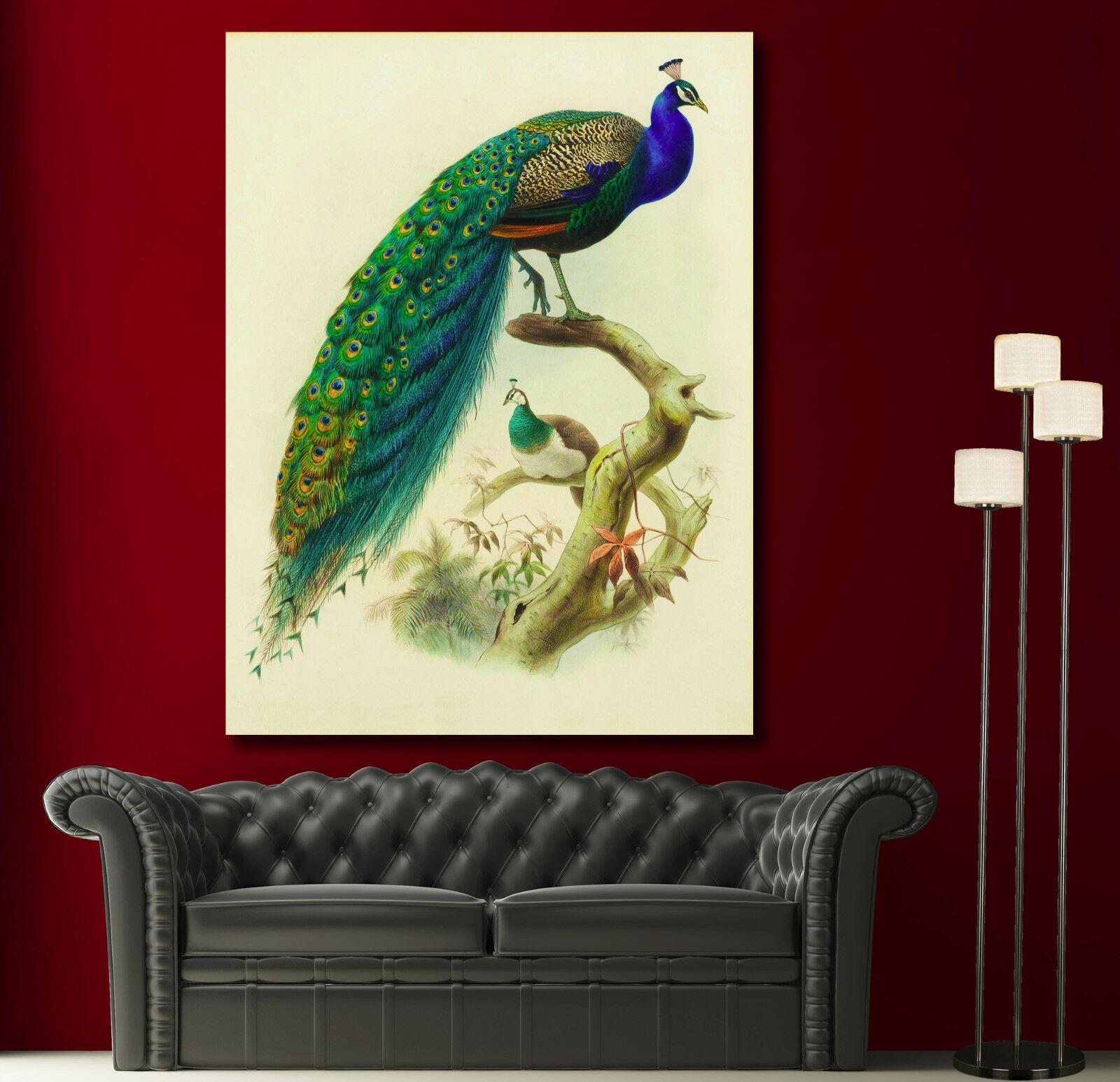 Canvas Giclee Prints Wall Art Peacock Feather Farbeful Print Home Decor 1 2