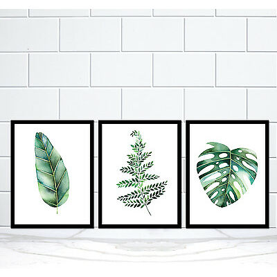Set of 3 Botanical Green Leaf Monstera Palm Fern Watercolour Art Print Poster