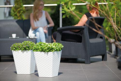 NEU Rattana 3D Quadrat Blumenkübel Blumentopf Übertopf Einsatz Weiß Anthrazit