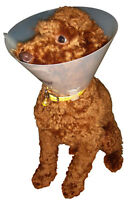 Veterinary Medical Elizabethan Cone Collar For Dogs