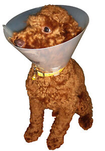 Veterinary-medical-Elizabethan-cone-collar-for-dogs-15-cm-e-collar