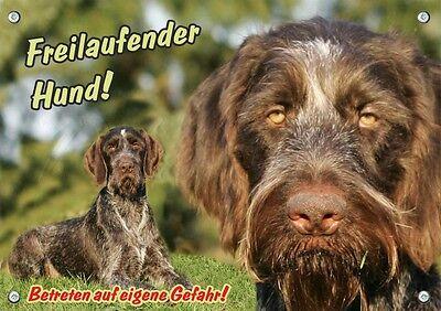 100% Wahr Hundewarnschild - Deutsch Drahthaar - Metall Türschild - Stabil - 1a Qualität Weich Und Leicht