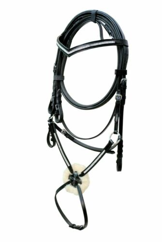 Grackle Bridle with 2-Row Chain on v,browband on Nose-size Full/&Cob