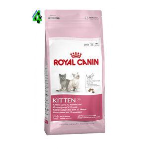 Royal Canin Kitten 36 10 Kg Alimento Per Gatti Gatto Cuccioli Da 4 A