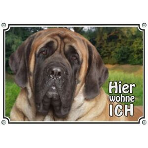 Dogs-Sign-MASTIFF-UV-resistant-warning-sign-for-your-home