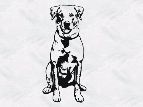 Labrador Hundetattoo Möbel- 29 Fenster- Auto- Tattoo H.100cmxB.45cm Wand-