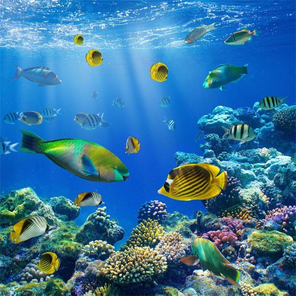 3D Beautiful Ocean 109 WallPaper Murals Wall Print Decal Wall Deco AJ WALLPAPER