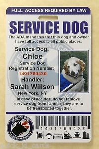 SERVICE-DOG-ID-CARD-FOR-SERVICE-ANIMAL-PROFESSIONAL-ADA-RATED-0