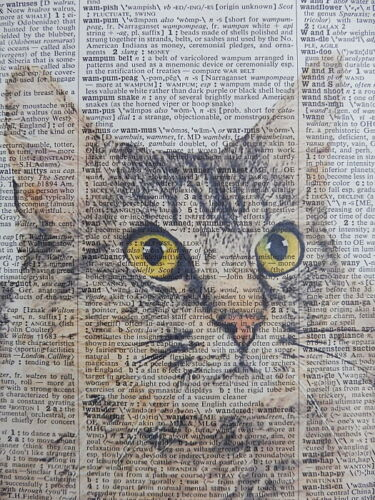 dictionary page art LaPerm Cat Wall Print No.122 cat lover gifts