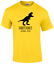 miniature 4 - Kids Personalised Dinosaur T-Shirt  Boys Girls T-Shirt Kids Tee Top