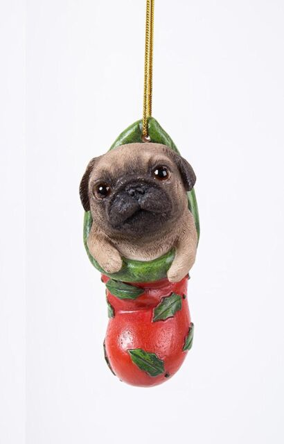 Leonardo Collection Dog Studies Fawn Pug Sitting LP40455 Dog Ornament Figurine