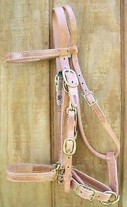 Halter-Bridle-Combo-Heavy-Duty-Harness-Leather