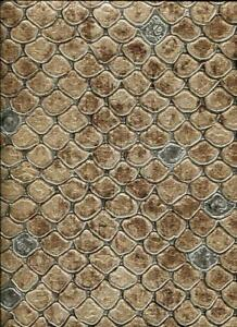 Details About 17106 Roberto Cavalli 6 Snakeskin Brown Black Wallpaper