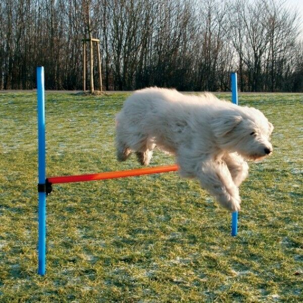 Dog Agility Adjustable Hurdle Jump Exercise Equipment Obedience/Show Training