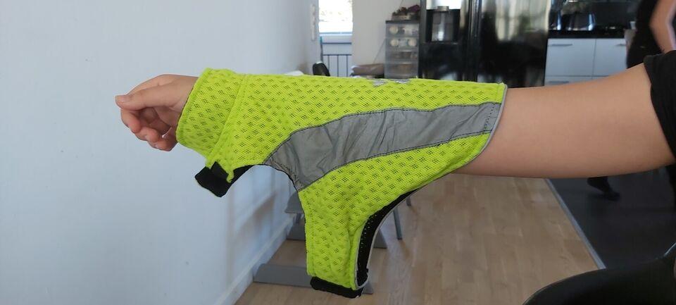 Hundebeklædning