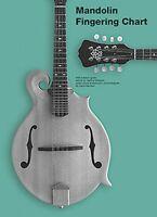 Mandolin Fingering Chart - Music Mandolin 014042871